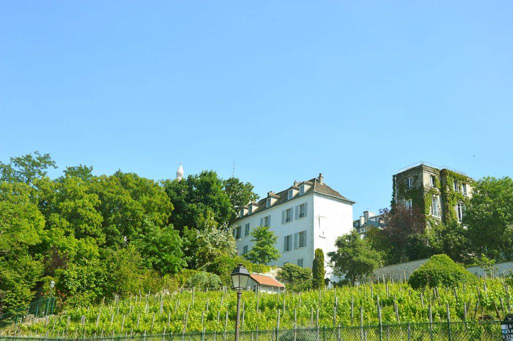 le clos de la Butte Montmartre