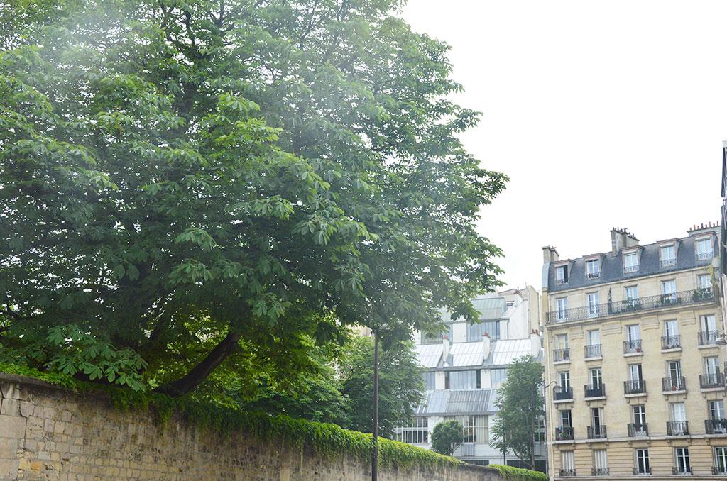 rue Ganneron, cimetière de Montmartre